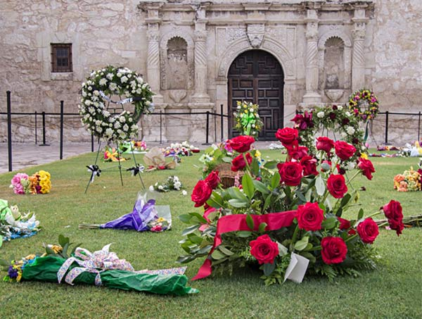 Flowers at the Alamo
