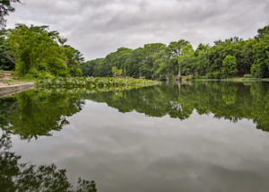 Guadalupe River _ Centerpoint Texas
