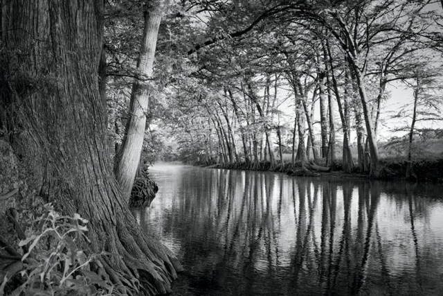 Early Morning Medina River, black and white